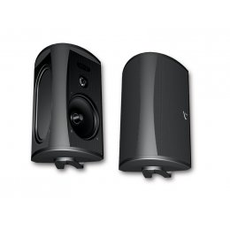 Definitive Technology AW5500 - All-Weather Loudspeaker Pair